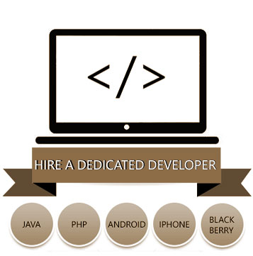 Hire a Dedicated Developer